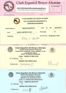 Exposiciones Club Braco Aleman