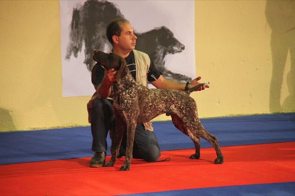 XIV Exposición Canina de León